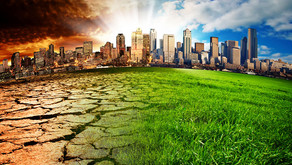 Climate Change—IMMEDIATE SOLUTIONS