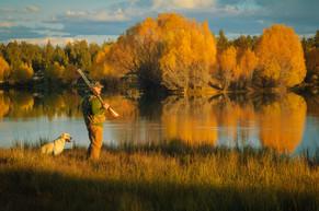 man-bird-hunting-with-dog-in-fall.jpg