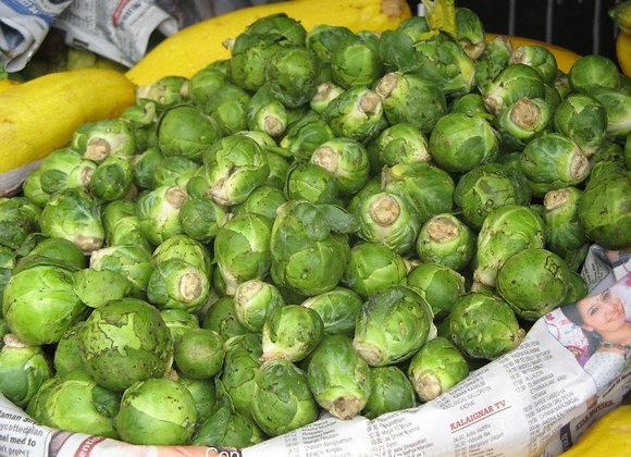 Cabbage(Local)
