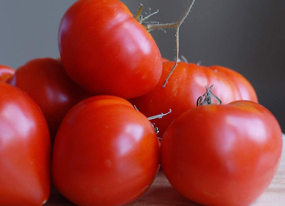 Tomato(Hybrid)