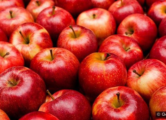 Apple(Misri)