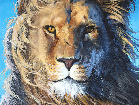 Poole on Revelation 5:5:  Behold, the Lion of Judah!