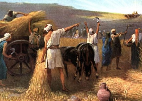 Poole on 1 Samuel 6:14, 15: Thanksgiving and Praise for the Ark's Miraculous Return