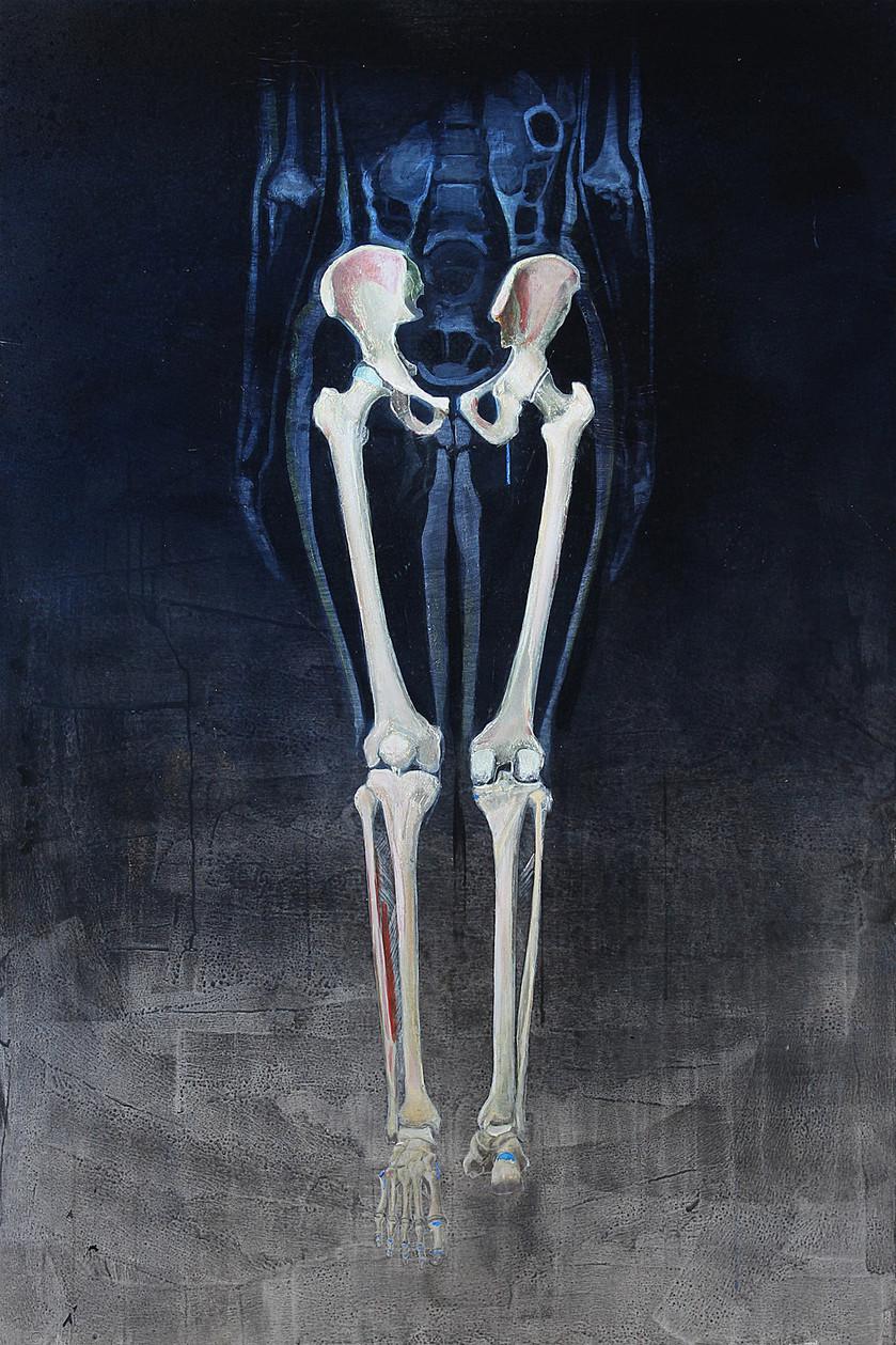 Skelett untere Extremität