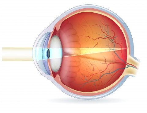 Fascinating Facts About The Eye: Part 3