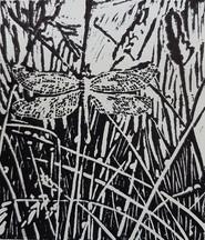 Linoleumsnede Libel