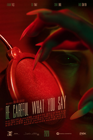Be Careful What You Say Poster