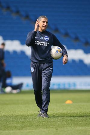 Chris Hughton Brighton & Hove FC Manger