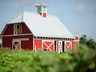 Gratitude and Growth Farm Program Starting In September
