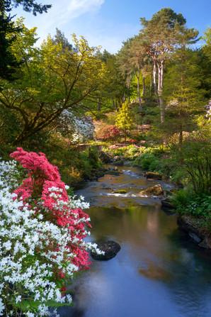 The Dell, Bodnant Garden