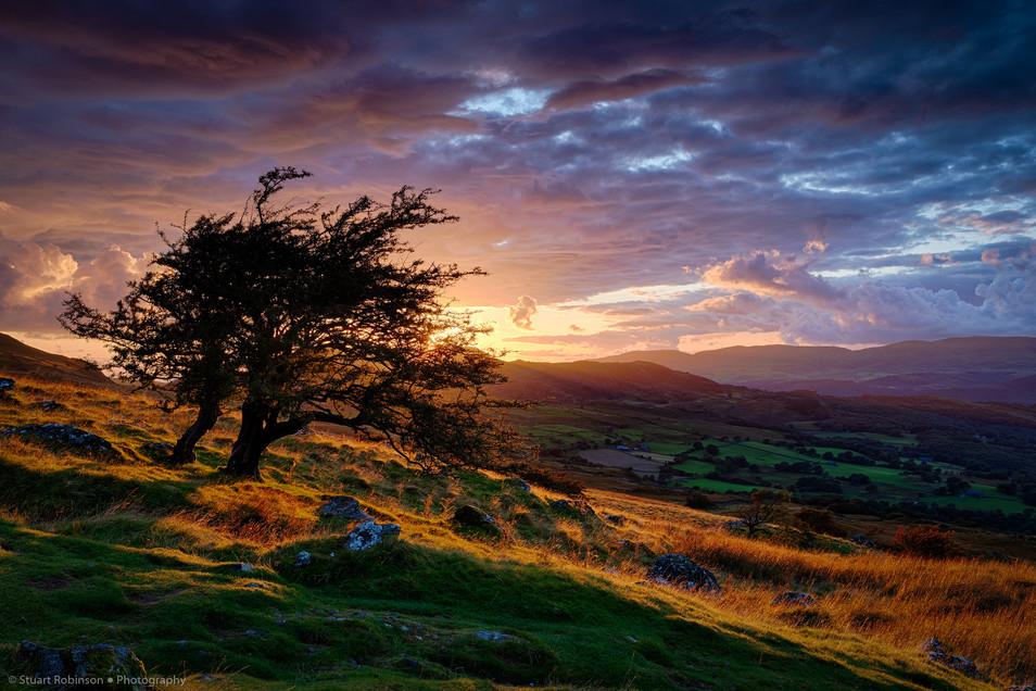 Cader Idris Valley, Wales