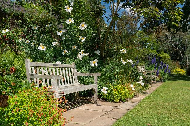 Ness Gardens in Summer
