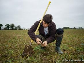 «L'autonomie passe d'abord par l'agronomie»