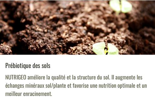 Nutrigeo -Améliore la qualité et la structure du sol