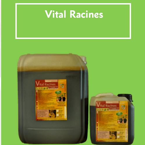 VitalRacines - Plocher 10kg