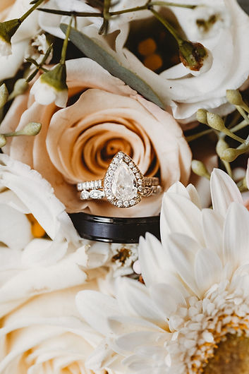 Alber_Wedding-2.jpg