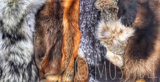 Mossy Bee leathercraft leather moosehide fur Saskatchewan earrings beaded Canadian made