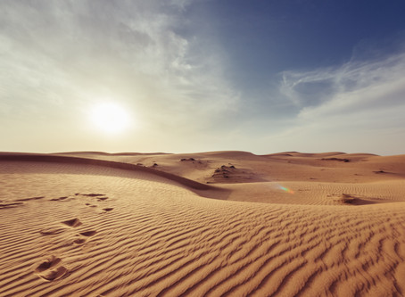 If you only have sunshine, you will end up in the desert!