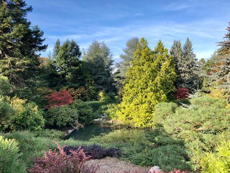 Kubota Garden.