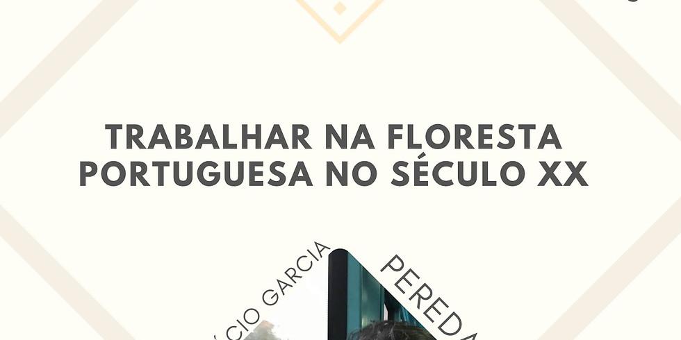 Trabalhar a Floresta Portuguesa no século XX