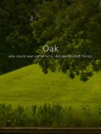 Oak header