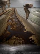 BP oil spill from Grand Isle