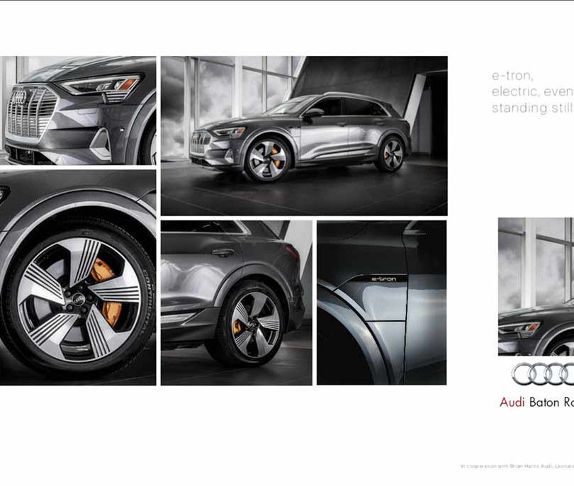 6. Audi, in cooperation with Brian Harris Audi, Baton Rouge  (logo for composite position)