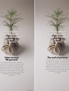 3-4-Tree-Grow-Up