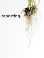 Deep-Reporting