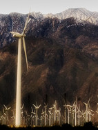 turbins-desert