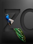 zoo mock-up, peacock©