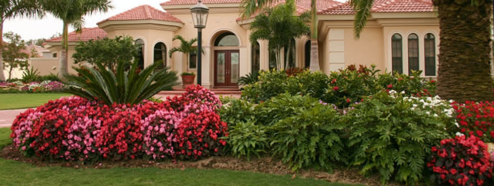 Ideas Central Florida Landscape Ideas Inspiring Garden and