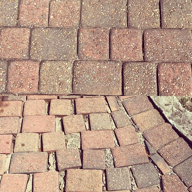 Leave the paver installation to the pros