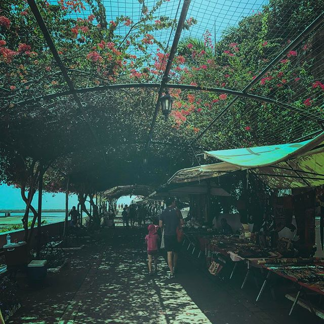 A beautiful trellising flower canopy I stumbled upon recently in Panama. Panama the country 🇵🇦, no