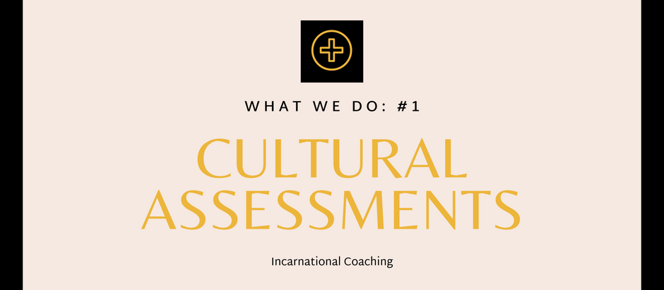 What We Do: Cultural Assessments