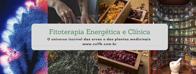 Capa Fitoterapia Energetica e Clinica.pn