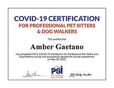 COVID-19 Certificate PSI.jpg
