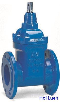 AVK 02/40 生鐵法蘭式膠膽閘掣 cast iron resilient gate valve