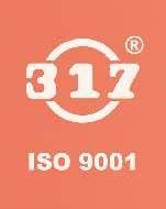 317 Logo Safety Valve.jpg