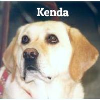 Ken-1 copy_edited_edited