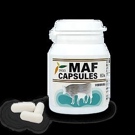 M-Capsule-2.png