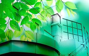 800x500_saisei-pharma.png