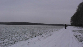 Архив: Зима в СНТ 2011г.