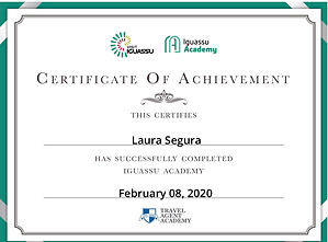 Iguassu Academy - Certificate.jpg