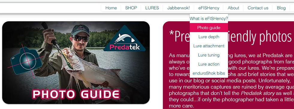 Excerpt from Predatek's Photo Guide