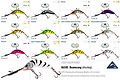 Product colours for Predatek B65UD Bomerang fishing lure