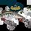 Redfin (RF)