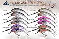 Predatek M40DT transparent MicroMin fishing lure colours