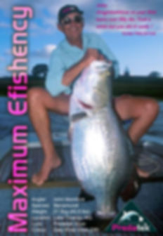 John Mondora caught this 27.5kg barramundi on a Predatek V150 Viper in Daly River Gold (DG) colours in Lake Tinaroo