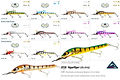 Predatek H150 HyperViper fishing lure colours
